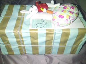 Secret Easter Bunny Package